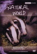 Natural World: Badgers - DVD (Region 2 & 4)