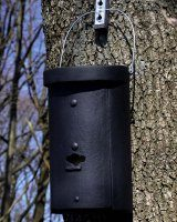 1FS Schwegler Large Colony Bat Box