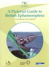 A Pictorial Guide to the British Ephemeroptera
