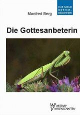 Die Gottesanbeterin (Mantis religiosa) [The European Mantis]