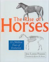 The Rise of Horses