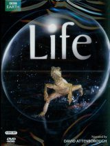Life (David Attenborough) - DVD (Region 2)