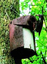 3SV Schwegler Nest Box with Predator Protection