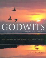 Godwits: Long-haul Champions