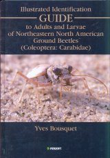 Illustrated Identification Guide to Adults and Larvae of Northeastern North American Ground Beetles (Coleoptera: Carabidae)
