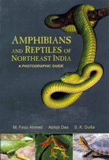 Amphibians and Reptiles of Northeast India: A Photographic Guide