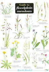 Guide to Floodplain Meadows