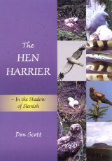The Hen Harrier