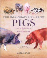 The Illustrated Guide to Pigs