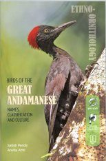 Birds of the Great Andamanese