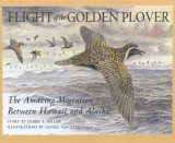 Flight of the Golden Plover