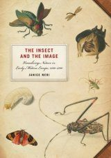 The Insect and the Image