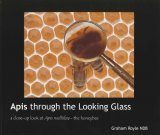 Apis Through the Looking Glass