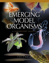 Emerging Model Organisms, Volume 2