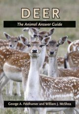 Deer: The Animal Answer Guide