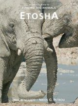 An Expert's Guide to Finding the Animals Etosha