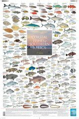 Coastal Fishes of Southern Africa, 1: Inshore - Poster