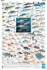 Coastal Fishes of Southern Africa, 2: Offshore - Poster