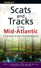 Scats and Tracks of the Mid-Atlantic