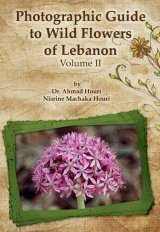 Photographic Guide to Wild Flowers of Lebanon, Volume 2