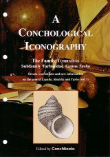 A Conchological Iconography: The Family Turbinidae