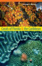 Corals of Florida & the Caribbean
