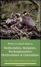 Where to Watch Birds in Bedfordshire, Berkshire, Buckinghamshire, Hertfordshire & Oxfordshire