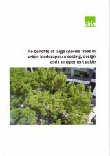 The Benefits of Large Species Trees in Urban Landscapes