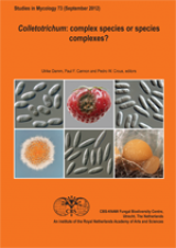 Colletotrichum: Complex Species or Species Complexes?