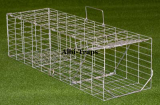 Albion Humane Rabbit Trap
