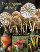 The Kingdom of Fungi
