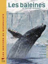 Les Baleines et Autres Rorquals [The Whales and Other Balaenoptera]