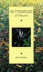 Butterflies of Delmarva
