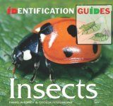 Insects: Identification Guide
