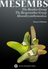 Mesembs: The Ruschia Group, The Bergeranthus Group & Mesembryanthemoideae