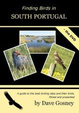 Finding Birds in South Portugal - The DVD (Region 2)