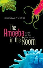 The Amoeba in the Room