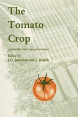 The Tomato Crop