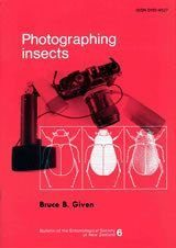 Photographing Insects