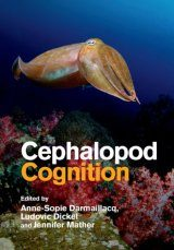 Cephalopod Cognition