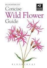 Bloomsbury Concise Wild Flower Guide