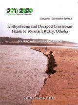 Ichthyofauna and Decapod Crustacean Fauna of Nuanai Estuary, Odisha