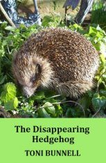 The Disappearing Hedgehog