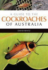 A Guide to the Cockroaches of Australia