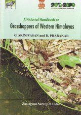 A Pictorial Handbook on Grasshoppers of Western Himalayas