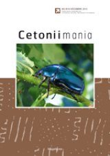 Cetoniimania, Volume 6 [English / French]