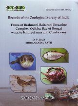 Fauna of Brahmani-Baitarani Estuarine Complex Odisha, Bay of Bengal w.s.r. to Ichthyofauna and Crustaceans