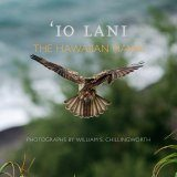 'Io Lani: The Hawaiian Hawk