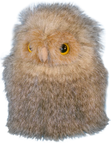 Owl Chick Soft Toy