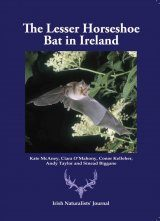 The Lesser Horseshoe Bat in Ireland